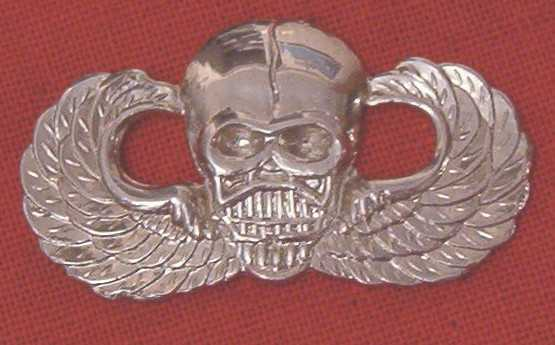 Airborne Wings basic with SKULL bfcb $8.00