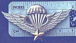 Airborne Wings VIETNAM basic cb $12.00