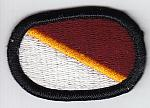250th Forward Surgical Team wings oval me ns $4.50